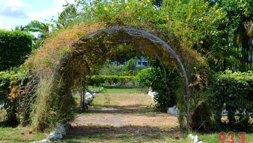 Small ,man-made canopies , such as the one in picture are a common sight around the gardens